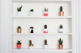 Image source: http://www.gh0stparties.com/2015/02/diy-painted-cacti-pots.html