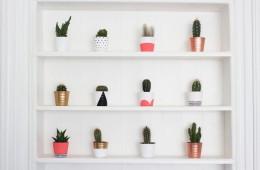 Image source: http://www.gh0stparties.com/2015/02/diy-painted-cacti-pots.html