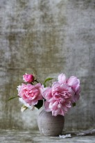 roses-828564_1280 (2)