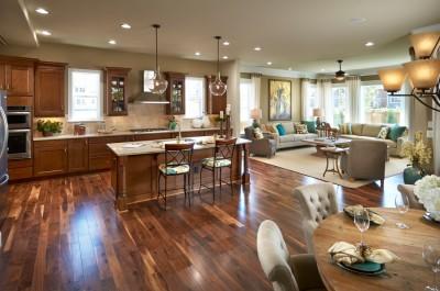 Prepossessing-Open-Concept-house-designs-Traditional-Kitchen-Denver