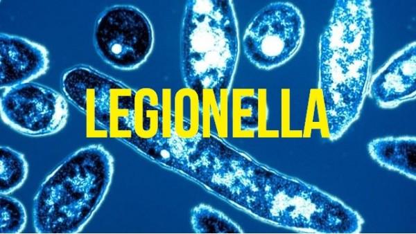 legionellaicon