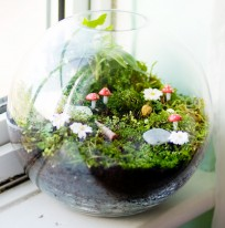 AD-Adorable-Miniature-Terrarium-Ideas-For-You-To-Try-23