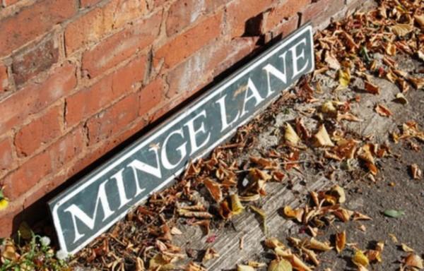 minge lane