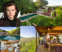 harry styles featured image