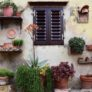 Seven clever ideas to make small gardens bloom