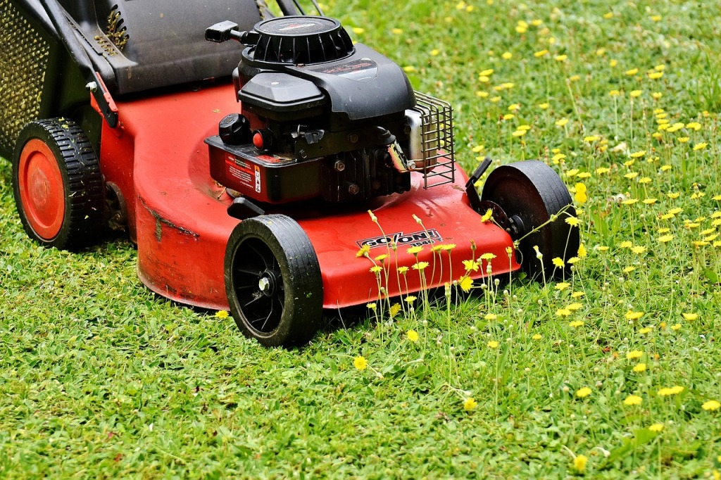 Why Landlords Should Hire a Professional Lawn Service for Rental Properties