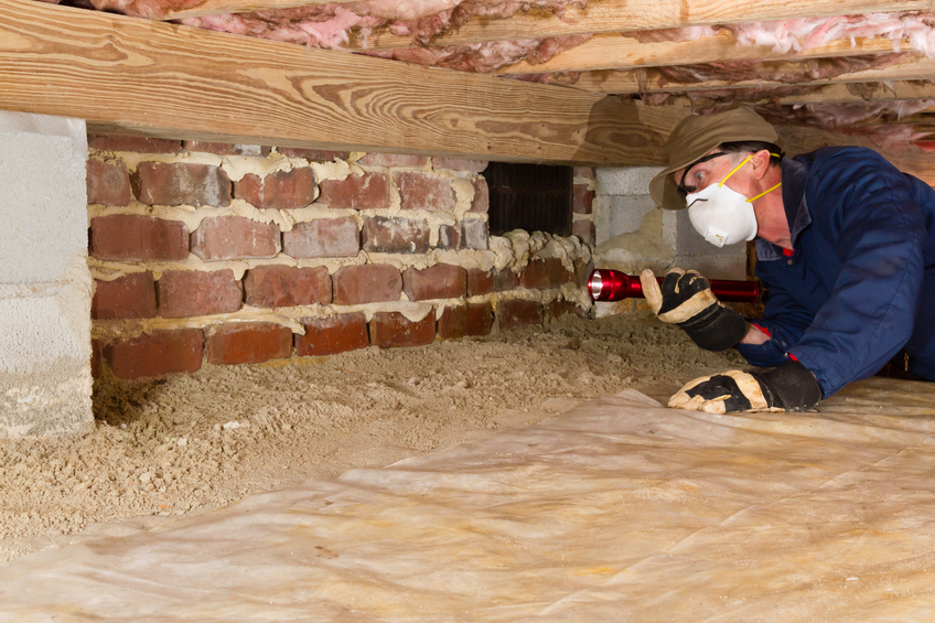 How do I choose a termite inspector?