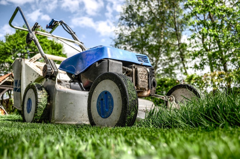 Garden Maintenance for Your Home