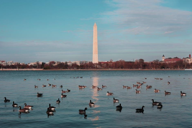 The Cost of Living in DC: This is What You Need to Know