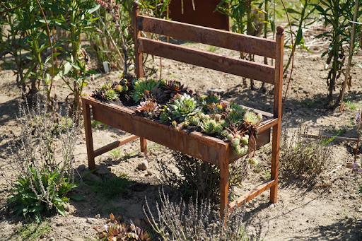 Top Ways to Decorate Your Garden