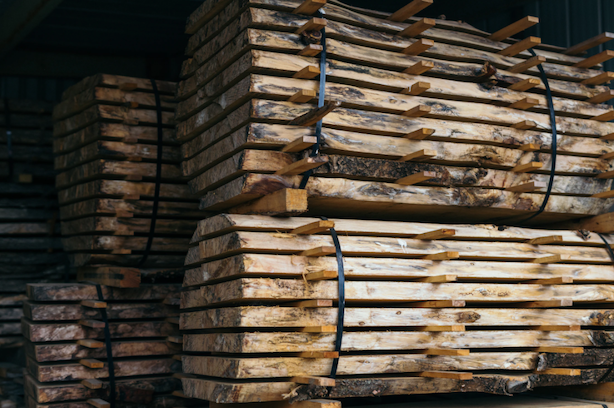 Timber in Construction: How the Property Market is Rediscovering its Love for Wood