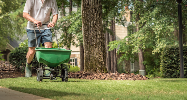 5 Tree, Yard, And Lawn Care Tips To Boost Your Home's Kerb Appeal